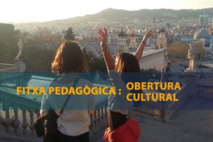 Fitxa Pedagògica Obertura cultural